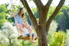 Two cute sisters having fun on a swing in blossoming old apple tree garden outdoors on sunny spring day royalty free stock photos
