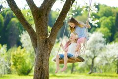 Two cute sisters having fun on a swing in blossoming old apple tree garden outdoors on sunny spring day. Spring outdoor activities for kids stock photos