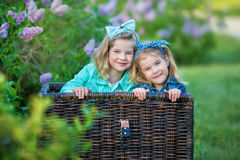 Two cute smiling girls sisters lovely together on a lilac field bush all wearing stylish dresses and jeans coats. Royalty Free Stock Photo