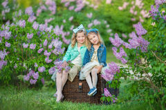 Two cute smiling girls sisters lovely together on a lilac field bush all wearing stylish dresses and jeans coats. Stock Image