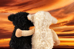 Two cute stuffed animals enjoy the sunset Stock Images
