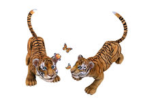 Two cute tiger cubs playing with butterflies Royalty Free Stock Photo