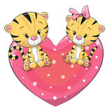 Two cute Tigers Stock Photo