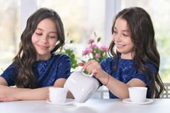 Twin girls drinking tea. Two cute twin girls drinking tea at kitchen Royalty Free Stock Photo