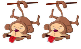 Two cute unusual vector ape monkeys Stock Photo