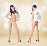 Two cute women angels standing with white wings and lingerie ove Royalty Free Stock Images