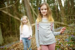 Two cute young sisters having fun during forest hike on beautiful early spring day. Active family leisure with kids. Family fun stock image