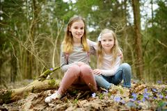 Two cute young sisters having fun during forest hike on beautiful early spring day. Active family leisure with kids. Family fun stock photos