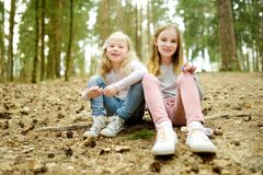 Two cute young sisters having fun during forest hike on beautiful early spring day. Active family leisure with kids royalty free stock image