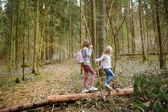 Two cute young sisters having fun during forest hike on beautiful early spring day. Active family leisure with kids. Family fun royalty free stock photos