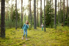 Two cute young sisters having fun during forest hike on beautiful summer day. Active family leisure with kids stock images