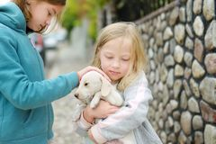 Two cute young sisters holding small white puppy outdoors. Kids playing with baby dog on summer day royalty free stock photos