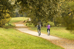 Two cyclists on autumn path with their backs to the beholder. Two cyclists on autumn path - Unidentified people with their backs to the beholder Stock Images