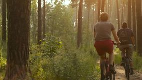Two Cyclists on Forest Trail. A beautiful journey bikers on a forest path stock footage