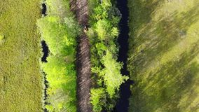 Two cyclists ride along the path. Path among the green woods and water in the reservoir top view. Road in the countryside. Path among the green woods and water stock video