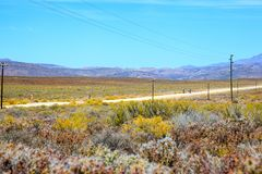 Two cyclists riding on a dirt road in the Karoo Royalty Free Stock Photos