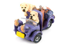 Two dags riding in a purple car. Isolated on white background royalty free stock image