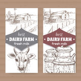Two dairy labels with farmhouse, cow, milk cans. Stock Photos