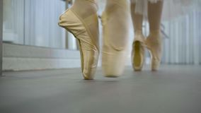 Two dancers are moving in pointe shoes in ballet studio. Young ballerinas turning body around, they have professional footwear on their feet with firm toes and stock footage