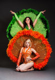 Two dancers in stage costumes Royalty Free Stock Image