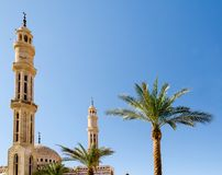 Two date palms two minarets of the mosque El-Mustafa in Sharm El stock photo