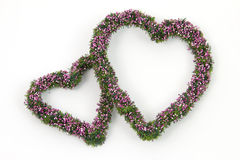 Two decoration hearts. Two hearts for decoration with a white background Stock Photos