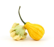 Two decorative gourds Royalty Free Stock Photography