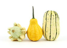 Two decorative gourds and a delicata squash Stock Photos