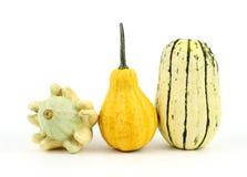 Two decorative gourds and a delicata squash Stock Photos