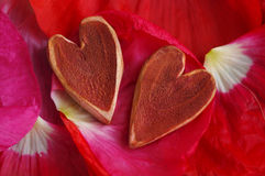 Two decorative hearts on poppy red petals Stock Image
