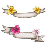 Two decorative kraft ribbons and lily flowers.  Stock Images
