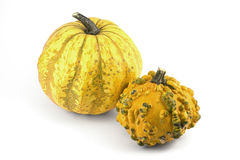 Two Decorative Pumpkins Royalty Free Stock Photos