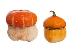 Two decorative pumpkins Royalty Free Stock Image