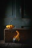 Two decorative pumpkins Stock Image