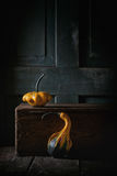 Two decorative pumpkins Stock Photography