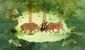 Two deer bucks fighting in forest royalty free stock photo