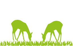 Two deer in green, animal and deer logo. Two deer in green, colored, animal and deer logo Royalty Free Stock Photography