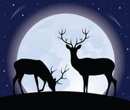 Two deers. Silhouette of two deer standing on a hill. Full moon on the background Stock Photos