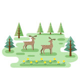 Two Deers In Forest Royalty Free Stock Images