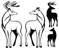 Two deers vector Stock Photos