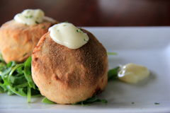 Two delicious crab cakes served with lemon caper remoulade over a bed of arugula Royalty Free Stock Photos