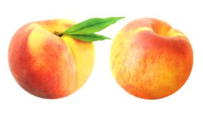 Two delicious fresh peach Royalty Free Stock Photo