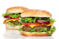 Free Two Delicious Hamburgers Isolated Royalty Free Stock Photos - 41996378