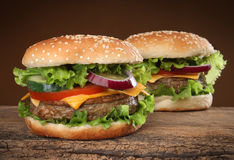 Two delicious hamburgers Stock Image