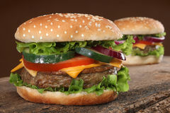 Two delicious hamburgers Stock Photos