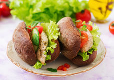 Two delicious and healthy sandwich hot dog with chicken Royalty Free Stock Images