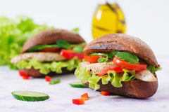 Two delicious and healthy sandwich hot dog with chicken Royalty Free Stock Photography