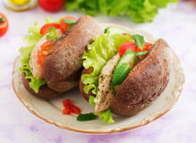 Two delicious and healthy sandwich hot dog with chicken Stock Photography