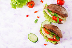 Two delicious and healthy sandwich hot dog with chicken and vegetables. Royalty Free Stock Photography