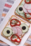 Two delicious and healthy sandwich with vegetables top view Royalty Free Stock Photos